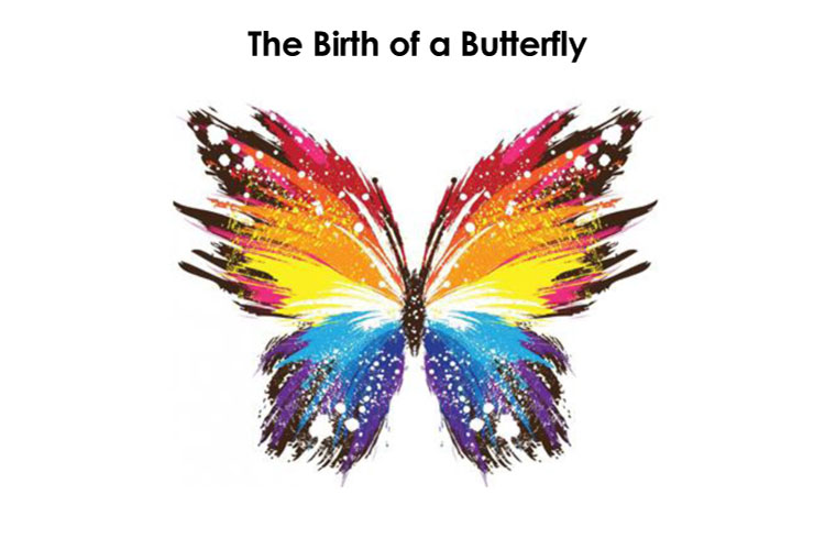 TheBirthOfButterfly
